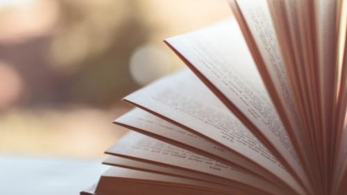 Publications Spotlight 2020