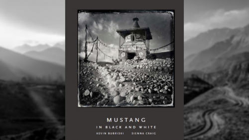 Mustang_book_cover_photo